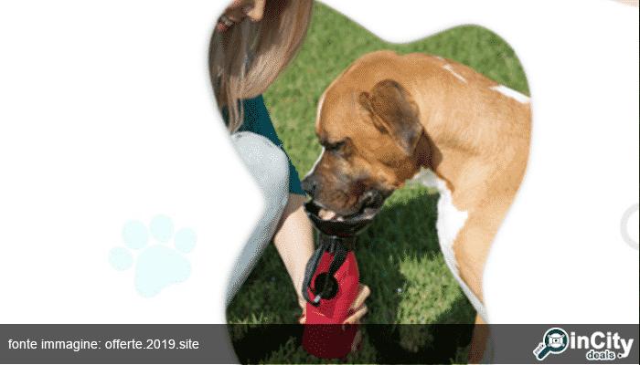 Borraccia per cani portatile: ecco la Doggy bottle